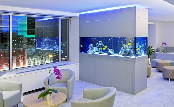 Fish Tanks Decoration Ideas
