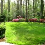 Landscape Backyard Ideas