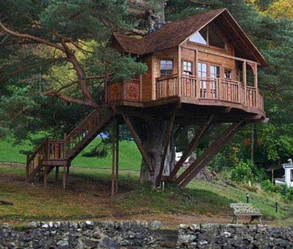 3 Unique Ideas To Build Tree House Architecture Home