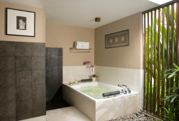 Bedrooms With Bathtub Ideas