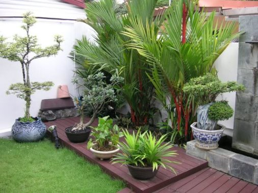 Terraced House Garden Ideas