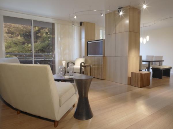 Modern Small Condo Interior Design