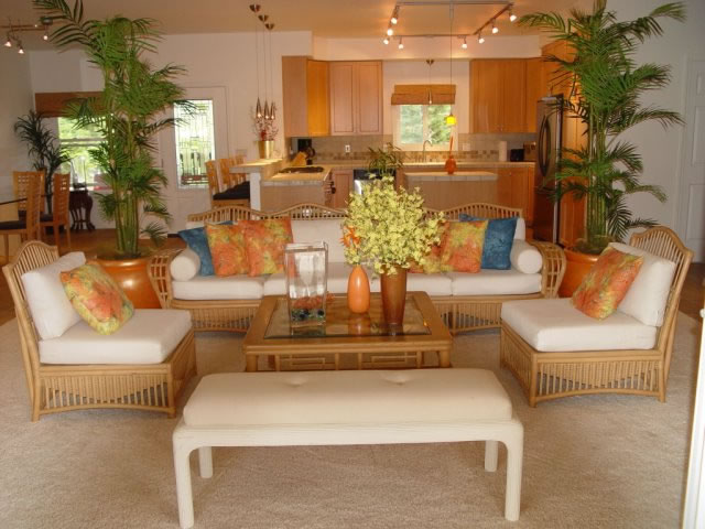 Living Room Open Kitchen
